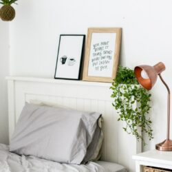 Two Gray Pillow On Bed Near Vine Plant And Table Lamp Inside Room